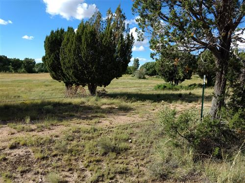 Photo of 69 Spring Drive, Concho, AZ 85924 (MLS # 226875)