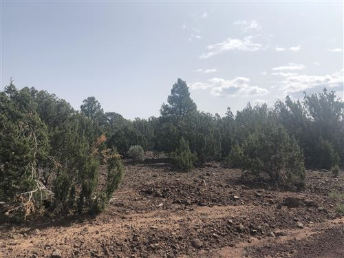 Photo of lot 143 vernon, Vernon, AZ 85940 (MLS # 231883)