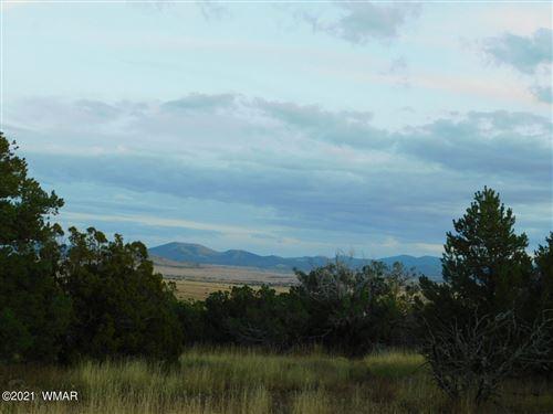 Photo of TBD Jaguar Road, Concho, AZ 85924 (MLS # 237898)