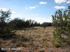 Photo of 6017 Wide Sky Road, Overgaard, AZ 85933 (MLS # 221903)