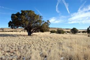Photo of Lot 112 Dove Valley Rd, Quemado, NM 87829 (MLS # 226904)