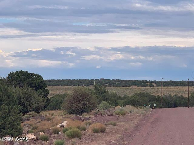 Photo for 2217 Sitgreaves Street, Show Low, AZ 85901 (MLS # 237906)