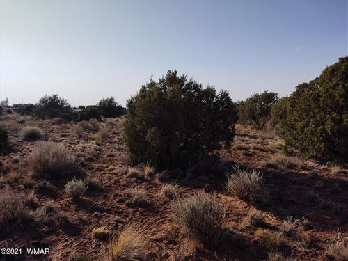 Photo of 9760 E Concho Highway, Snowflake, AZ 85937 (MLS # 234921)
