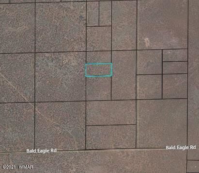 Photo for TBD Chimisa Ranch Road, Show Low, AZ 85901 (MLS # 234928)