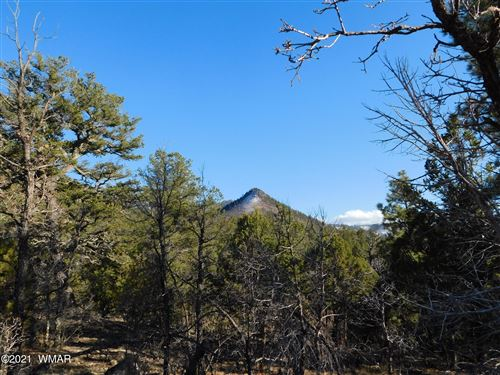 Photo of LOT 36 NOBLE MOUNTAIN ESTATES, Nutrioso, AZ 85932 (MLS # 233936)