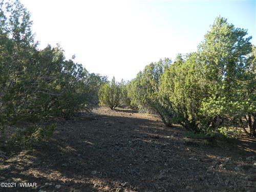 Photo of TBD 106-52-005J, Vernon, AZ 85940 (MLS # 235939)