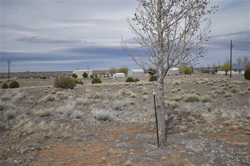 Photo of Lot 69 W Hawstack Circle, Taylor, AZ 85939 (MLS # 228946)