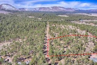Photo of PARCEL C COUNTY ROAD N2147, Alpine, AZ 85920 (MLS # 233946)