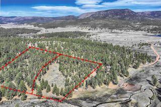 Photo of PARCEL D COUNTY ROAD N2147, Alpine, AZ 85920 (MLS # 233947)