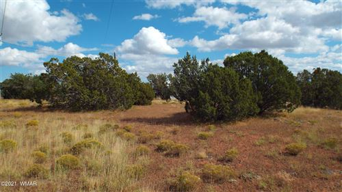 Photo of 14 County Road 8010, Concho, AZ 85924 (MLS # 237964)