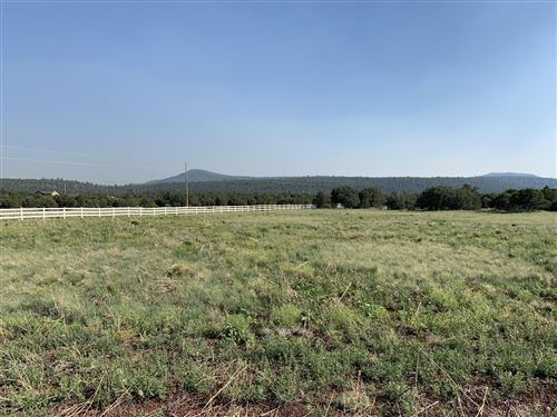 Photo of Lot E ACR N3282, Vernon, AZ 85940 (MLS # 229968)