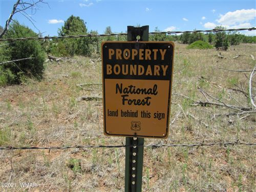 Photo of 5131 State Road 260, Clay Springs, AZ 85923 (MLS # 236968)