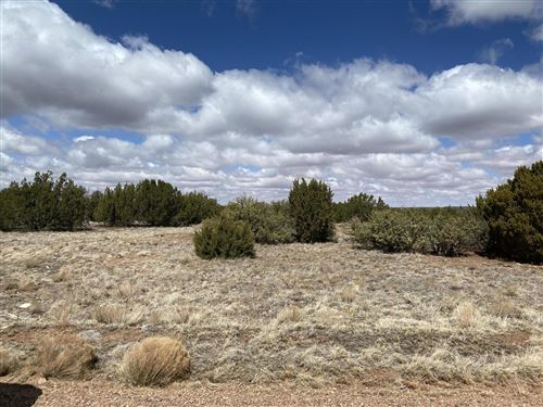 Tiny photo for 8560 Cannon Boulevard, Show Low, AZ 85901 (MLS # 234969)