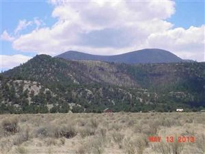 Photo of 00 Highway 180, Nutrioso, AZ 85932 (MLS # 203981)