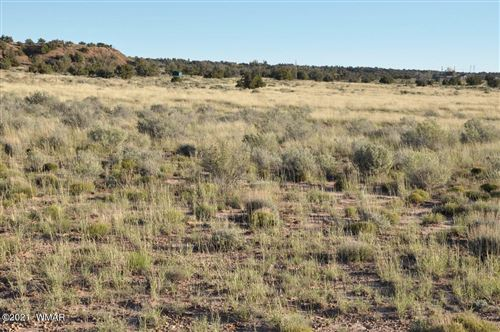 Photo of 9757 Butler Trail, Snowflake, AZ 85937 (MLS # 237990)