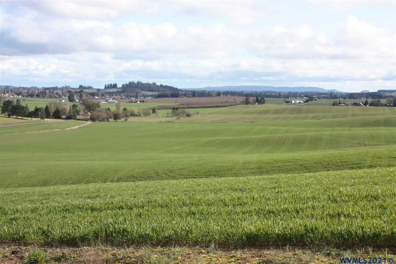 Photo of 20275 NW Bishop Scott Rd, Yamhill, OR 97148 (MLS # 783037)