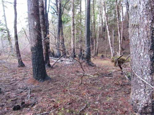 Photo of Parcel64326 North Fork Rd, Lyons, OR 97358 (MLS # 772668)