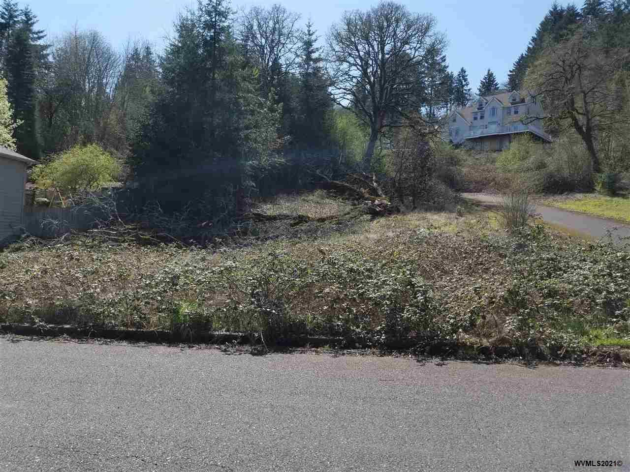 Photo of Lot 40 Morrow Ct, Salem, OR 97304 (MLS # 775827)