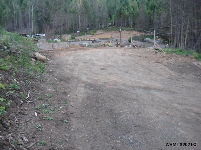 Photo of 105 Forest (&102) Av, Detroit, OR 97342 (MLS # 778934)