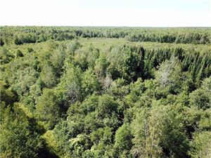Photo of 0 CTH B, Glen Flora, WI 54526 (MLS # 1535077)