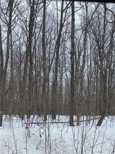 Photo of 78.98 Acres 340th Ave, Frederic, WI 54837 (MLS # 1550144)