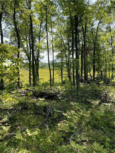 Photo of W303S8347 FOREST CT N, MUKWONAGO, WI 53149 (MLS # 1557144)