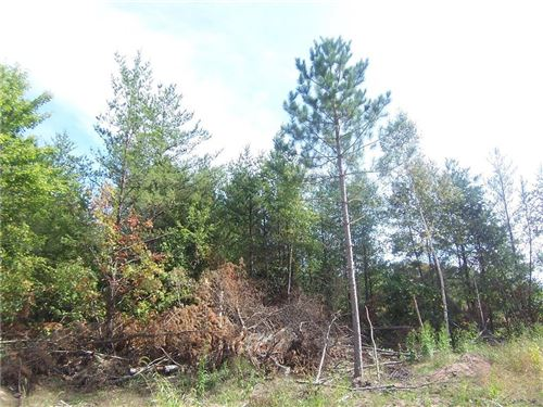 Photo of 11852 218TH AVE, BRISTOL, WI 53104 (MLS # 1559181)