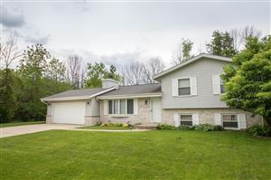 Photo of S78W18253 Lions Park Dr, Muskego, WI 53150 (MLS # 1642354)