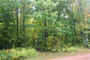 Photo of 9.6 Acres SPLIT ROCK LANE, Wausau, WI 54403 (MLS # 21812357)