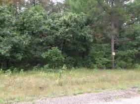 Photo of 5Ac 17th Dr, Arkdale, WI 54613 (MLS # 1839394)