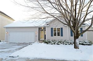 Photo of 1422 Dayflower Dr, Madison, WI 53719 (MLS # 1872435)