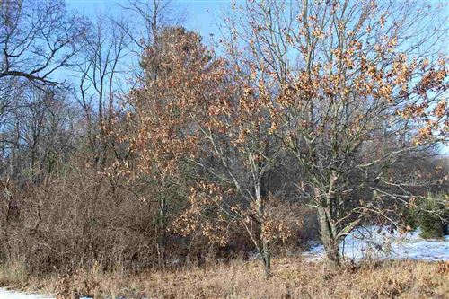 Photo of AKRON DRIVE, Wild Rose, WI 54984 (MLS # 50216487)