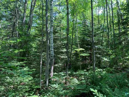 Photo of Lot 1 Blue Wing Bay Rd, Bayfield, WI 54814 (MLS # 6095562)
