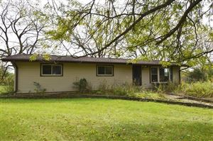 Photo of S106W22935 River Ave, Big Bend, WI 53103 (MLS # 1662758)