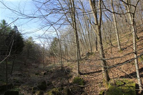 Photo of 12608 Soules Creek Dr, Cazenovia, WI 53924 (MLS # 1735760)