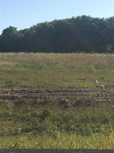 Photo of N57W27426 Green Meadow Rd #Lt 2, Lisbon, WI 53089 (MLS # 1702891)