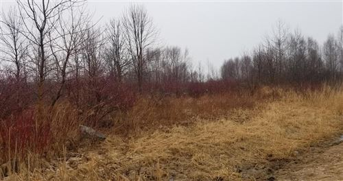 Photo of 5166 Lower Lakeview Ridge Rd, Belgium, WI 53004 (MLS # 1681932)