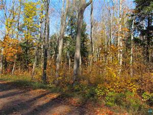 Photo of 000 NORTH SHORE RD, LAPOINTE, WI 54850 (MLS # 6073962)