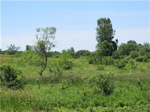 Photo of 0 Twp Road 198, Bellefontaine, OH 43311 (MLS # 428378)