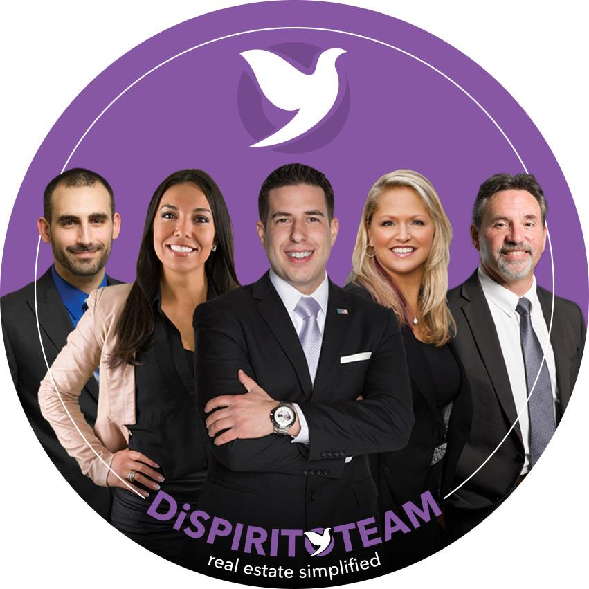 Mike, The DiSpirito Team - HomeSmart Professionals