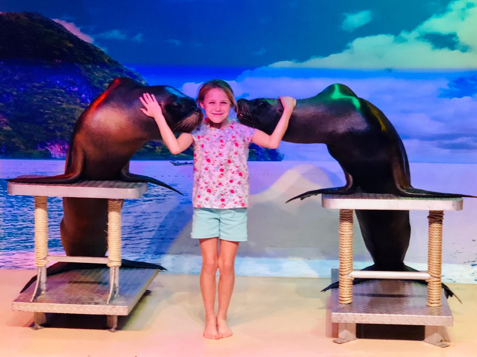 sea lions with girl