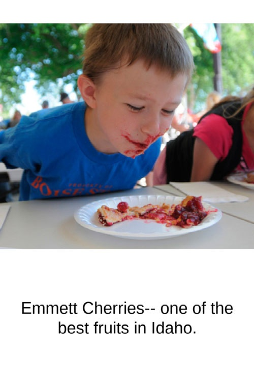cherry-festival-small
