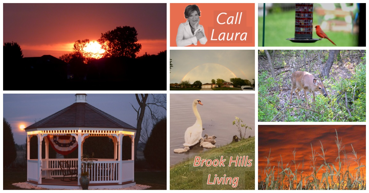 Brook Hills Living-Laura Alberts Orland Park Realtor