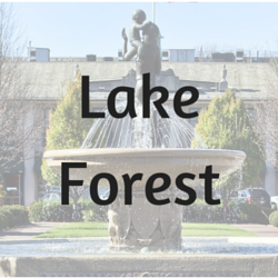 Lake Forest market video