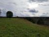 Hogg Ridge