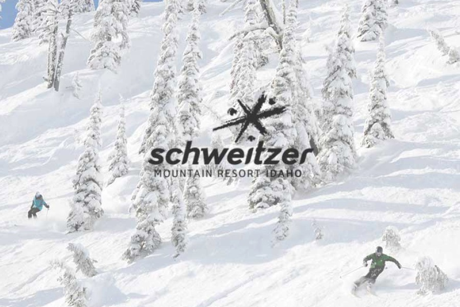 www.schweitzer.com