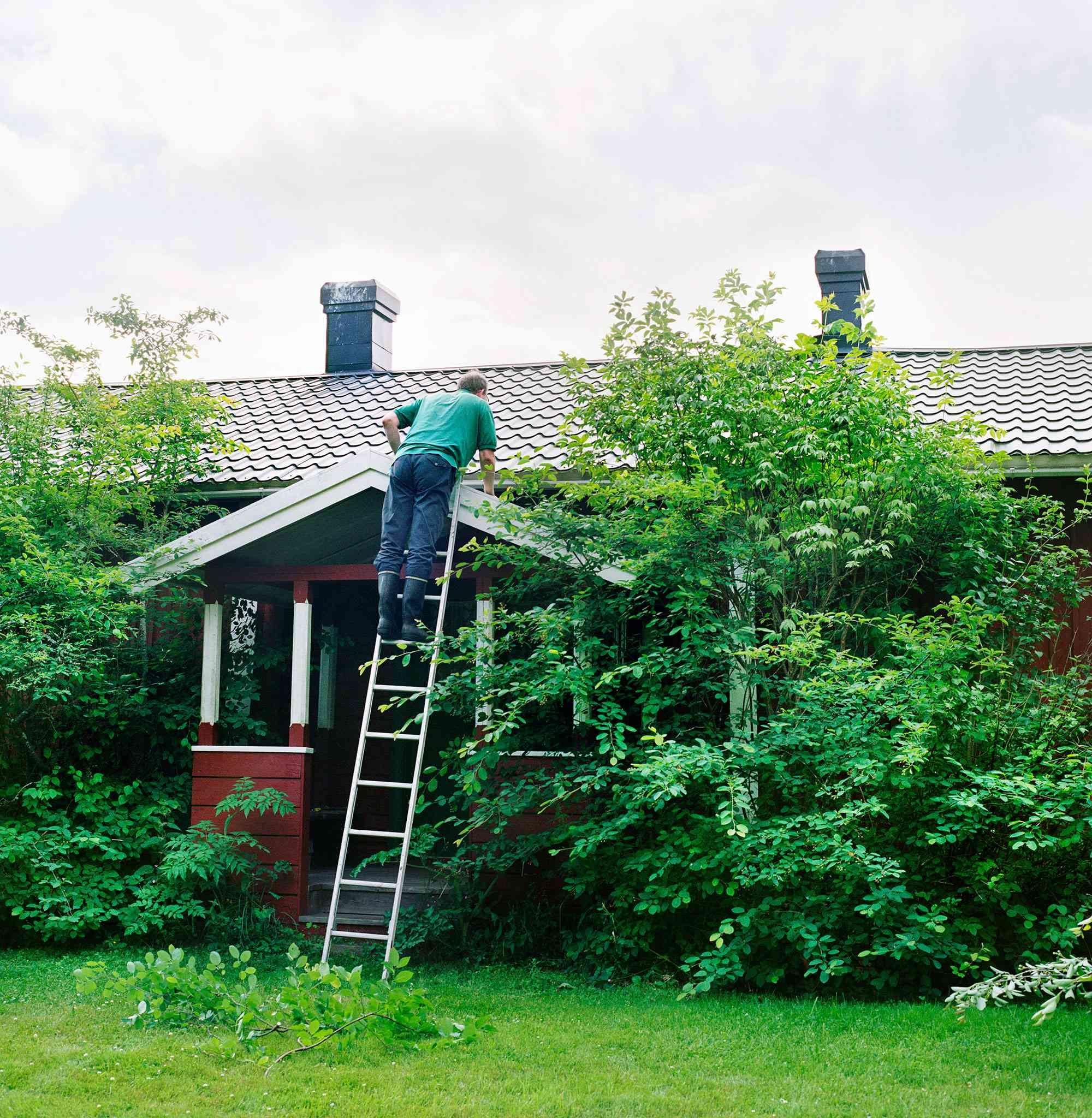 Man-climbing-roof-ladder-GettyImages-108440990-b33a0d8fc0f0433eada85d893f892a74
