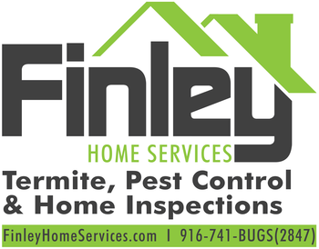 Home & Pest Inspection