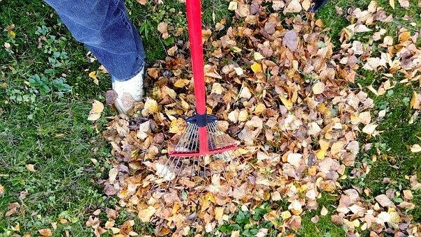 raking-2756006__340