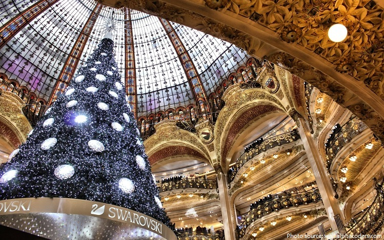 Tallest Indoor Christmas Tree